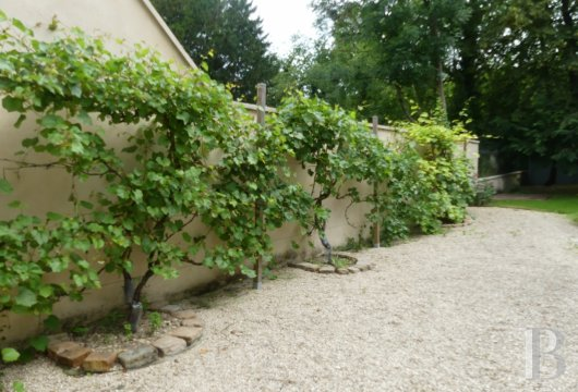mansion houses for sale France burgundy   - 16