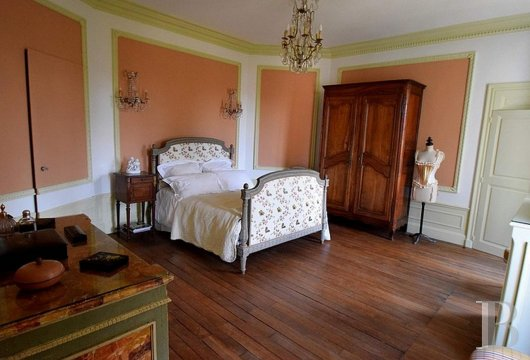 mansion houses for sale France burgundy   - 13