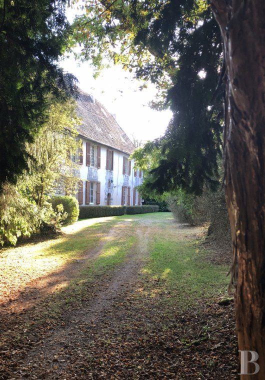 Castles / chateaux for sale - aquitaine - An 18th century chateau, with its partially renovated outbuildings, an enclosed farmyard,  a lake and a swimming pool, in 2 ha of fenced parklands in Périgord-Limousin Regional Nature Park in Green Périgord