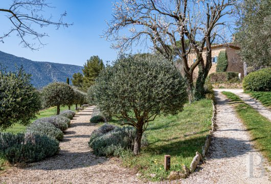 vineyards for sale France provence cote dazur   - 22