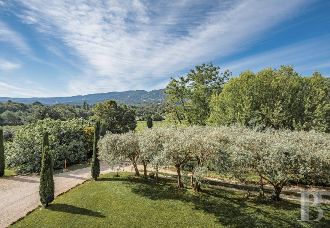 vineyards for sale France provence cote dazur   - 24
