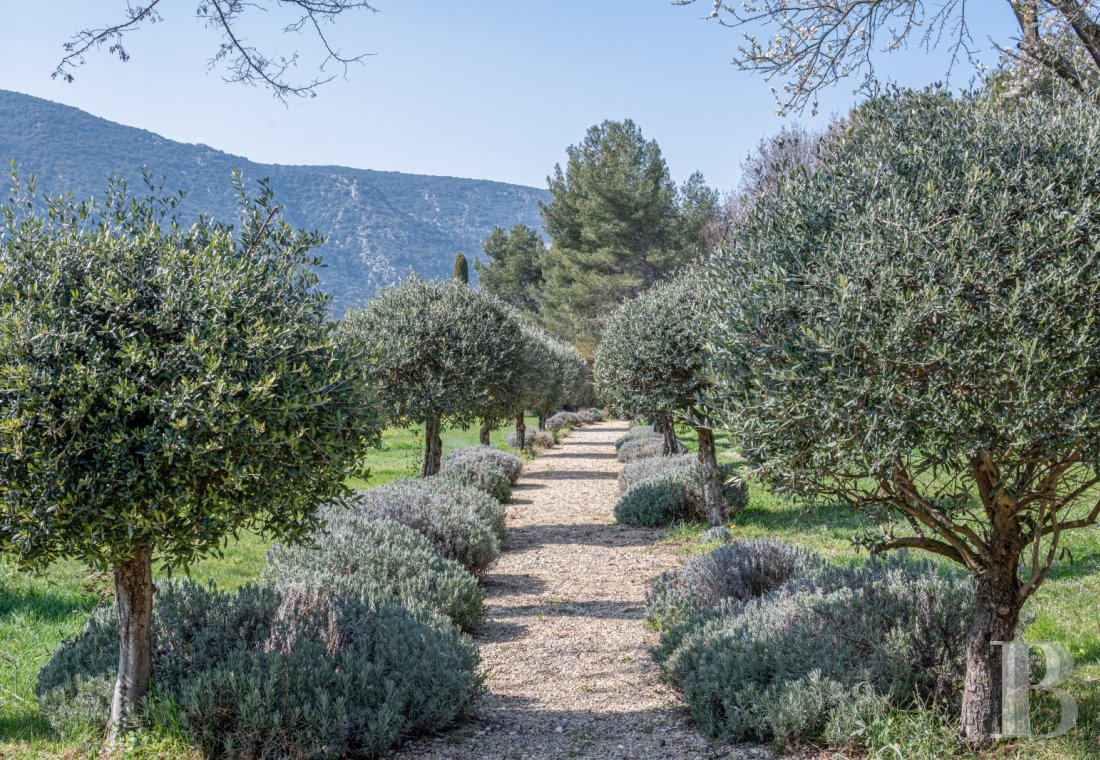 vineyards for sale France provence cote dazur   - 23