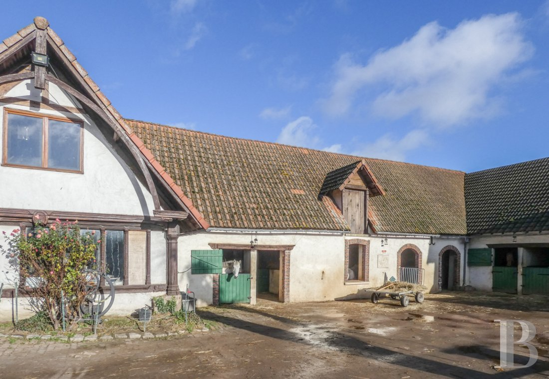 french equestrian properties for sale center val de loire   - 2