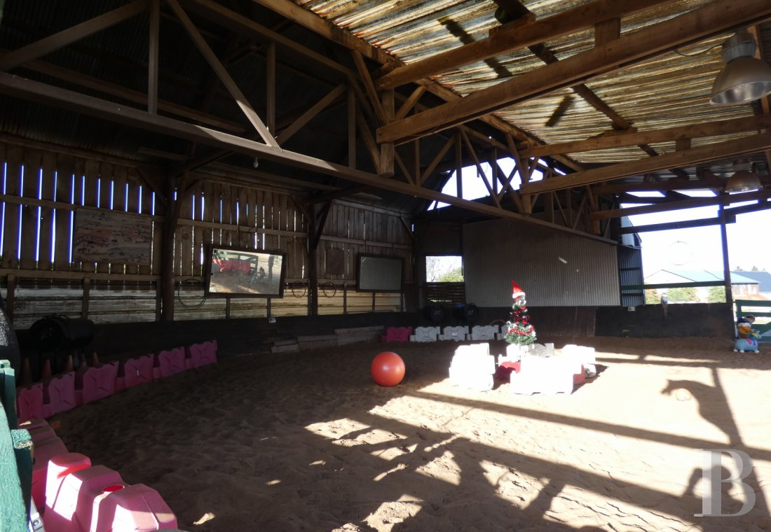 french equestrian properties for sale center val de loire   - 8