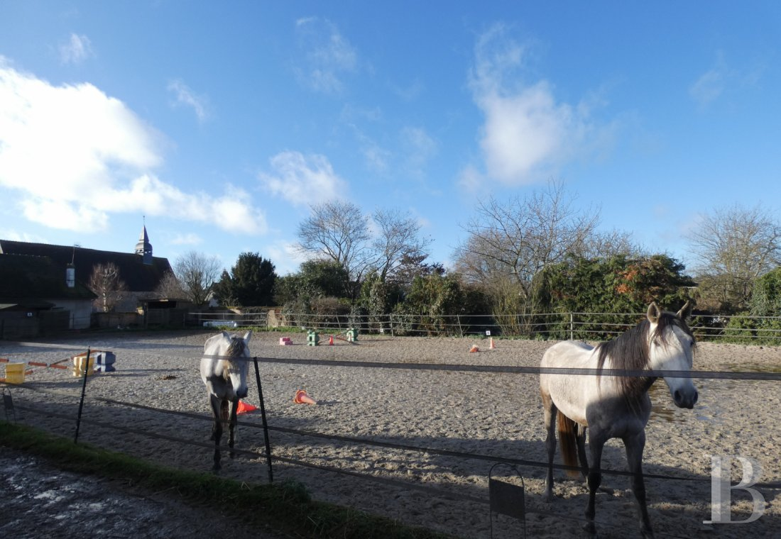 french equestrian properties for sale center val de loire   - 10