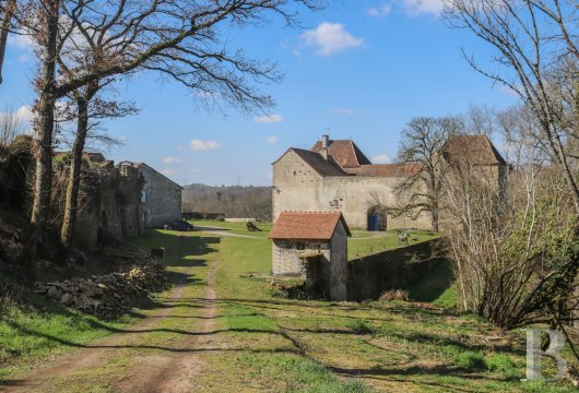 chateaux for sale France limousin   - 19