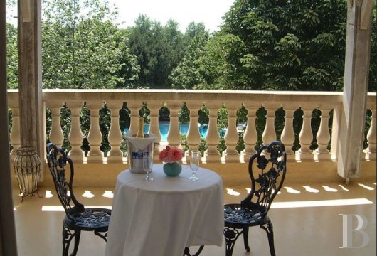 France mansions for sale poitou charentes   - 8