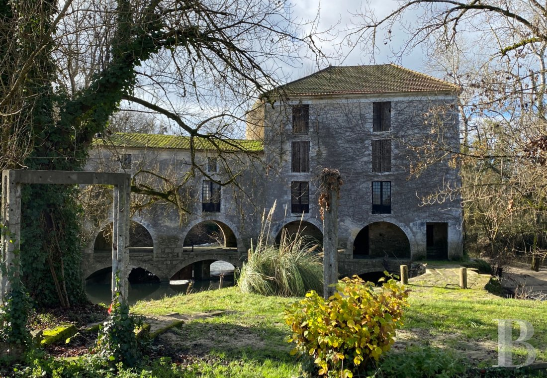 Mills for sale - aquitaine - A house and its listed mill on the river Dropt, with meadows, a lake and a dominant view over the river