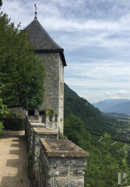 chateaux for sale France rhones alps   - 14