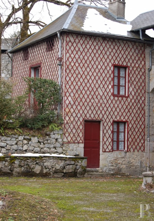 chateaux for sale France rhones alps   - 18