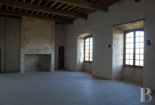 chateaux for sale France midi pyrenees   - 11