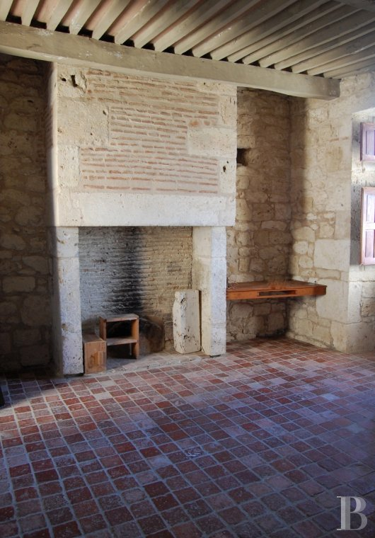 chateaux for sale France midi pyrenees   - 10