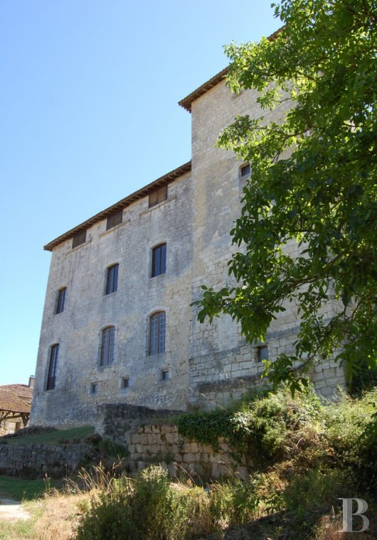 chateaux for sale France midi pyrenees   - 4