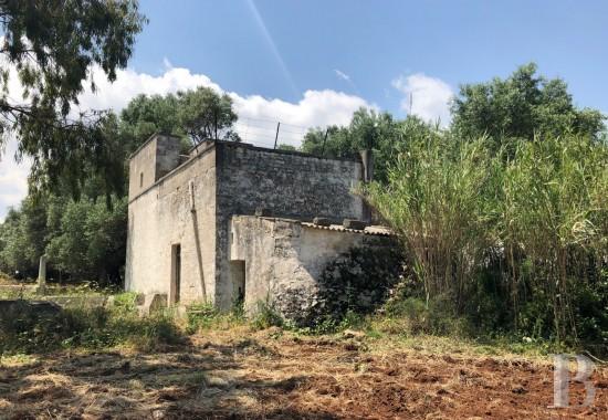 house casale - 1