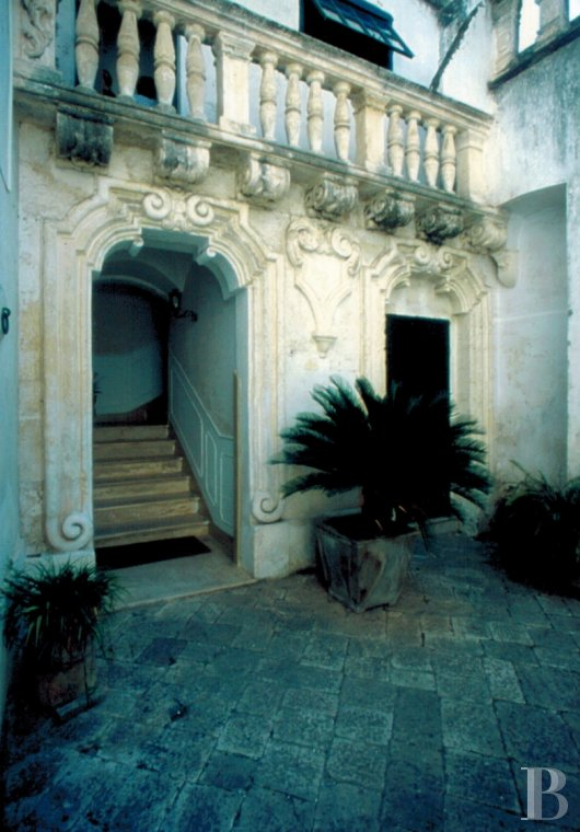 palazzo for - 5